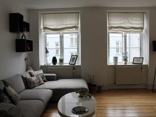 Charming Copenhagen apartment close to Citadel - Copenhagen vacation rentals