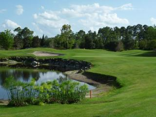 Orange Lake Country Club - Kissimmee vacation rentals
