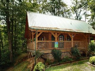 Semi-Private 2 bedroom pet friendly cabin,6 miles to downtown Pigeon Forge TN - Sevierville vacation rentals