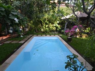 Lovely Bed and Breakfast with Internet Access and A/C - Denpasar vacation rentals