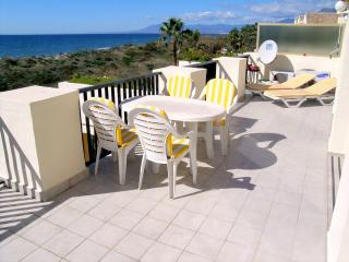 Front line beach Penthouse - Elviria vacation rentals