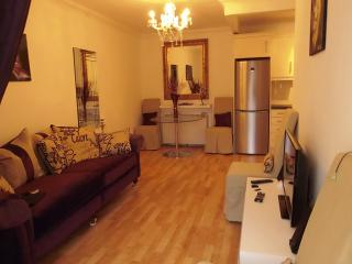 Perfect Condo with Internet Access and Satellite Or Cable TV - Dublin vacation rentals