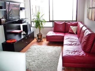 Luxury Apartment with Access to Gym, Sauna, etc. i - Lima vacation rentals