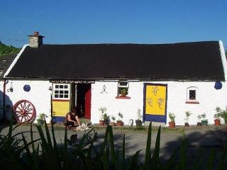 Cathy's Cosy Cottage - Borrisokane vacation rentals