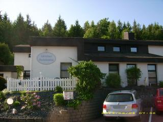 Bright 4 bedroom Schonau an der Brend Guest house with Deck - Schonau an der Brend vacation rentals