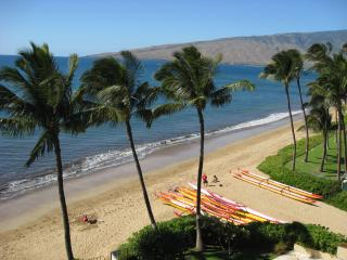 Nice 2 bedroom Condo in Kihei with DVD Player - Kihei vacation rentals