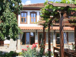 Bright 5 bedroom Bed and Breakfast in Kalofer - Kalofer vacation rentals