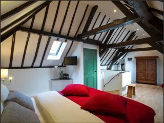 Villa Rameau - Leiden vacation rentals