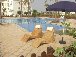 Sunny, happy apartment to rent - Murcia vacation rentals