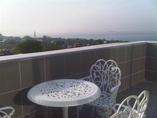 Ascot House Penthouse Apt - Istanbul vacation rentals