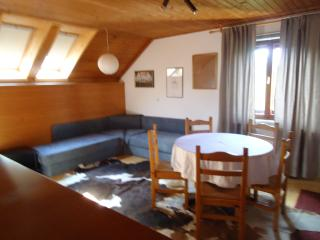 Holidays in the old farm house - Bled vacation rentals