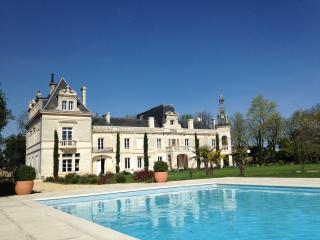 11 bedroom Chateau with Internet Access in Jarnac - Jarnac vacation rentals