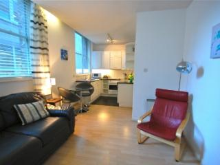1 bed apartment St Pauls/Blackfriars with WiFi! - London vacation rentals