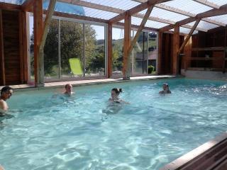 Nice 8 bedroom Gite in Le Puy-en Velay - Le Puy-en Velay vacation rentals