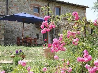agriturismo dondoli bio farmhause - Greve in Chianti vacation rentals