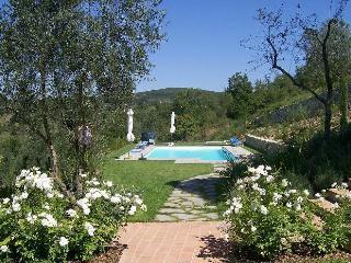 le coste 3 - Rignano sull'Arno vacation rentals