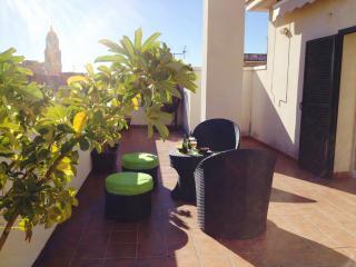 LIVIN4MALAGA - PENTHOUSE MERCED - AMAZING TERRACE - Malaga vacation rentals