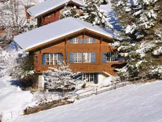 Lovely Villa with Internet Access and DVD Player - Wengen vacation rentals