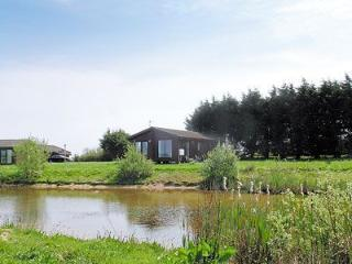 Hartland Forest Scandinavian Style Lodges set in the heart of North Devon - Bideford vacation rentals