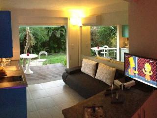 Paradise Bird: Studio design,piscine,jardin,hamacs - Trois-Ilets vacation rentals