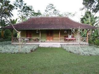 2 bedroom Villa with Internet Access in Payangan - Payangan vacation rentals
