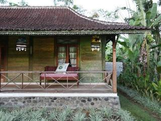 Beautiful Villa with Internet Access and Cleaning Service - Payangan vacation rentals