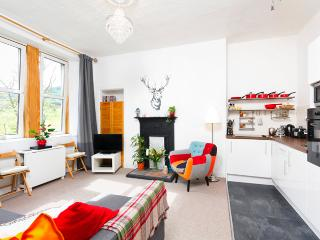 Royal Mile 5 mins walk, FREE parking/Wifi. - Edinburgh vacation rentals