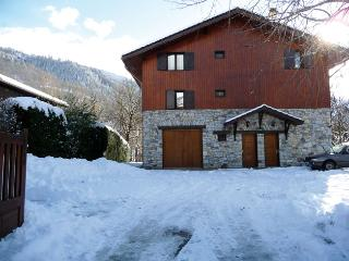 Nice Condo with Deck and Internet Access - Bourg Saint Maurice vacation rentals