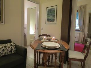 Giacinto Charming 1 bedroom apartment - Florence vacation rentals
