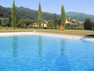 Lucia, Lg apt, pool, wi-fi - Villa Collemandina vacation rentals