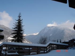 1 bedroom Apartment with Internet Access in Morzine-Avoriaz - Morzine-Avoriaz vacation rentals