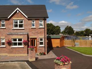Parkhead Lodge Ballymena - Ballymena vacation rentals