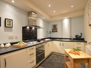 Romantic Cottage with Internet Access and Garden - Maentwrog vacation rentals