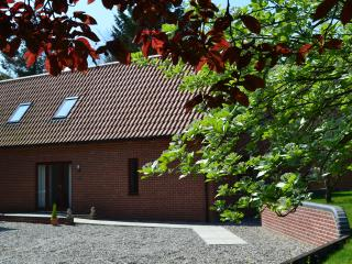 Nice 3 bedroom Lodge in North Walsham - North Walsham vacation rentals