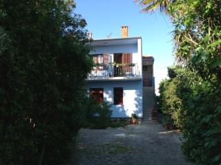 Apartment in villa, garden, pool,sea close green - Zadar vacation rentals