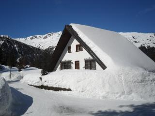 Nice Chalet with Internet Access and Television - Davos vacation rentals