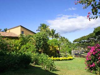 Romantic Condo with DVD Player and Wireless Internet - Wailea vacation rentals
