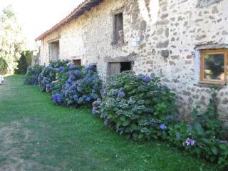 Le Domaine de Panissac - Bellac vacation rentals