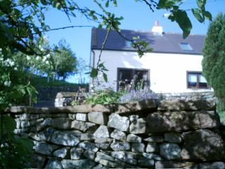 Greenhead Lodge - Dumfries vacation rentals