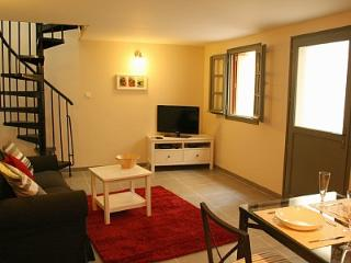 Perfect 1 bedroom Vacation Rental in Carcassonne - Carcassonne vacation rentals