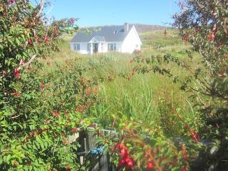 Inishbofin Island Apartment with FREE WiFi - Inishbofin vacation rentals