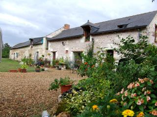 3 bedroom Farmhouse Barn with Internet Access in Allonnes - Allonnes vacation rentals