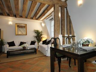 Gregoire Duplex Suite 400 - Paris vacation rentals