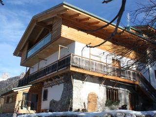 Nice Condo with Internet Access and Central Heating - Selva di Cadore vacation rentals