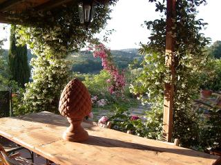 Lovely 3 bedroom Farmhouse Barn in Scandicci - Scandicci vacation rentals