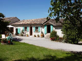 Chambres d'hôtes - La Maison du Chai Gaillac - Castelnau-de-Montmiral vacation rentals