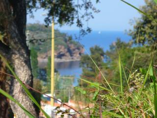 Casa Serena F Trilocale Soltur - Capoliveri vacation rentals