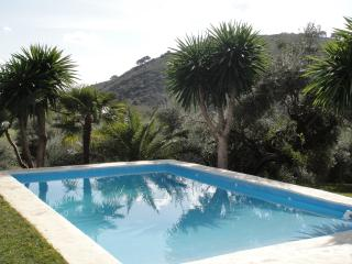 Pet-family friendly villa with private swimingpool, walking distans to amenities - Cortes de la Frontera vacation rentals