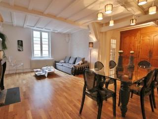 CHIC DESIGN ROUSSIN - Dijon vacation rentals