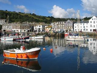 Mevagissey Harbour Cottage - Mevagissey vacation rentals